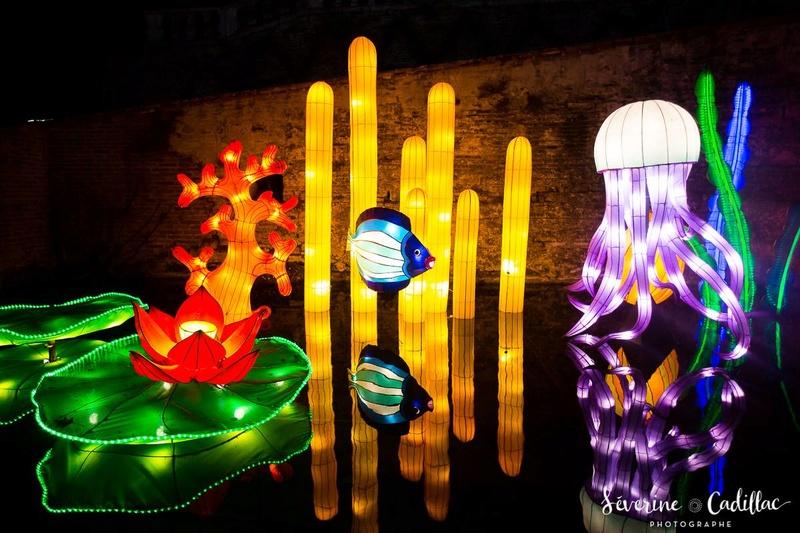 2017 - Festival des lanternes à Gaillac 20626110