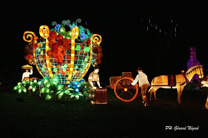 2017 - Festival des lanternes à Gaillac 24173110