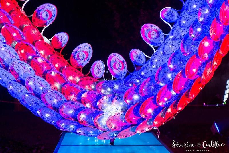 2017 - Festival des lanternes à Gaillac 24883610