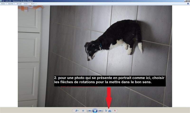 Comment poster des photos sur le forum Testph14