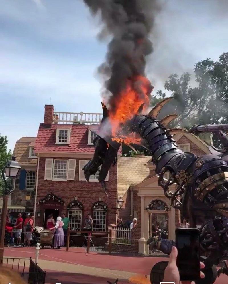 [Magic Kingdom] Disney Festival of Fantasy Parade (09 mars 2014) - Page 8 029dd510