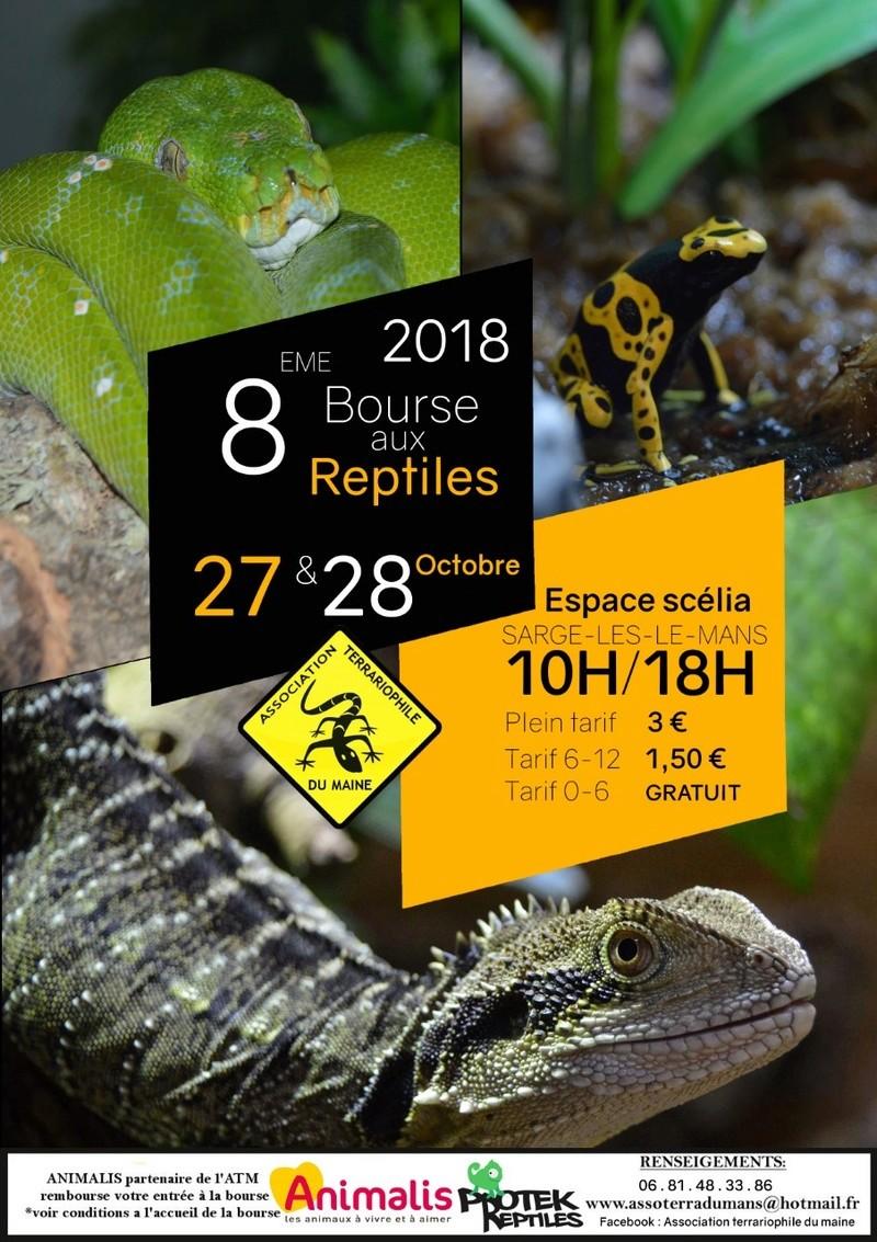 8ème bourse aux reptiles de l'Association Terrariophile du Maine (ATM) Bourse10