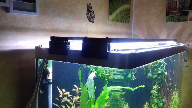 éclairage pour mon aquarium fait maison  25130210