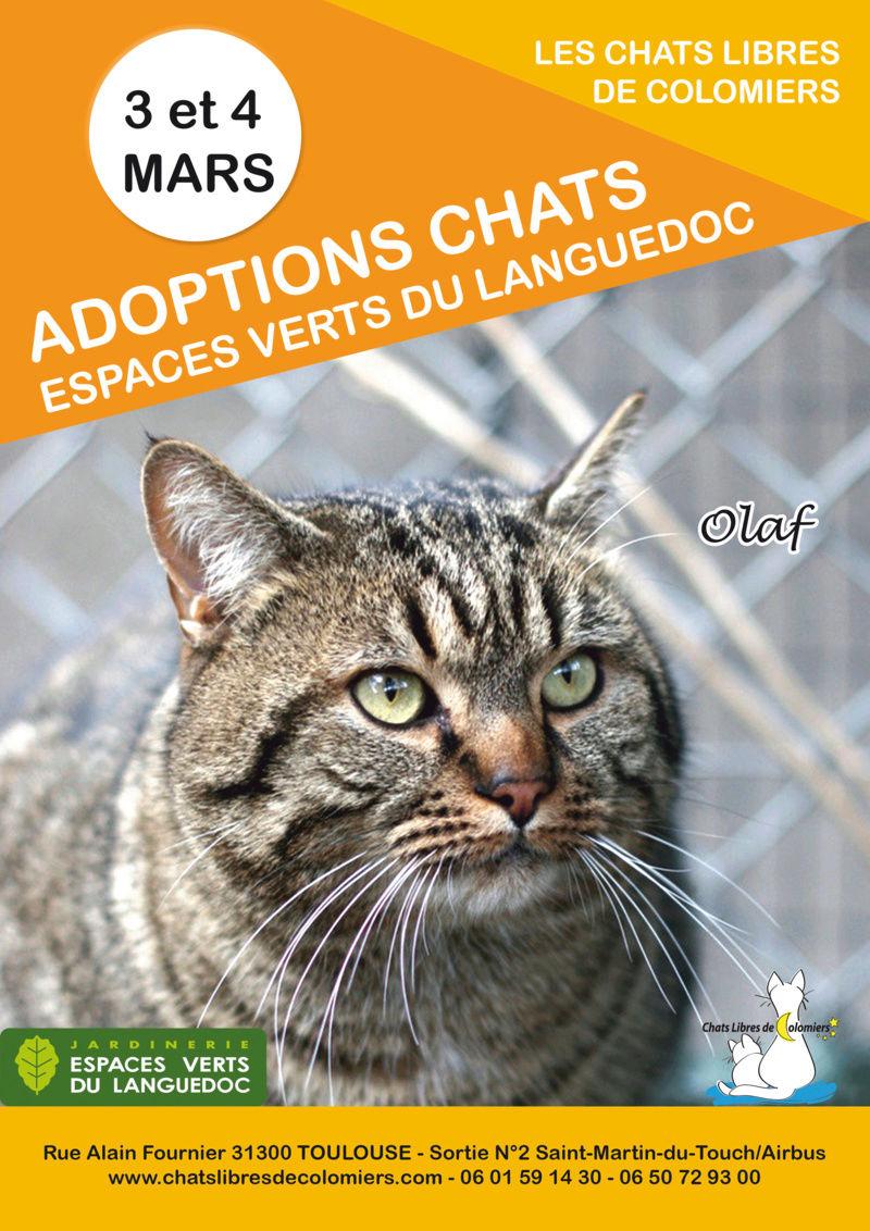 Week-end adoptions les 3 et 4 mars aux Espaces Verts du Languedoc 2018-020