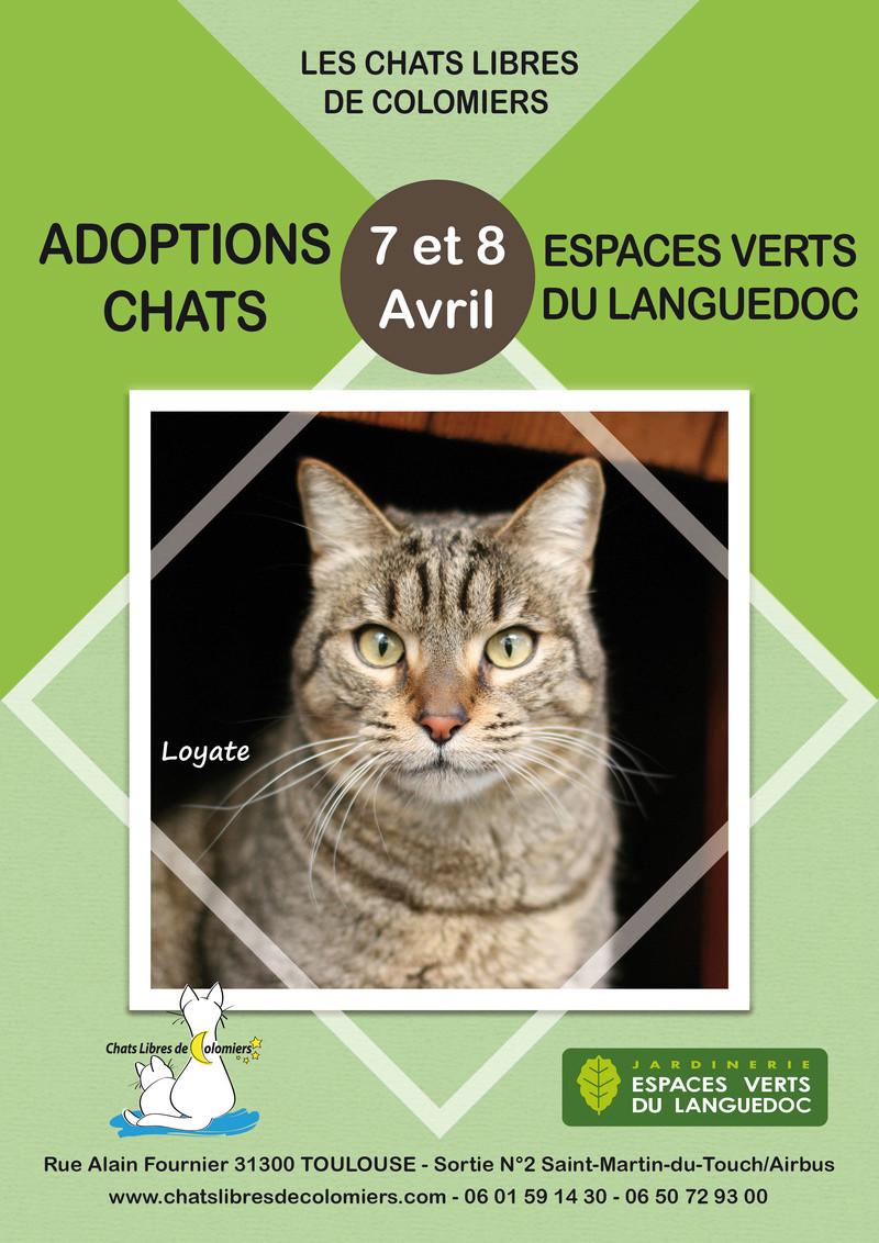 Week-end adoptions les 7 et 8 avril aux Espaces Verts du Languedoc 2018-033