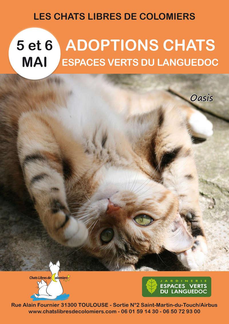 Week-end adoptions les 5 et 6 mai aux Espaces Verts du Languedoc  2018-039