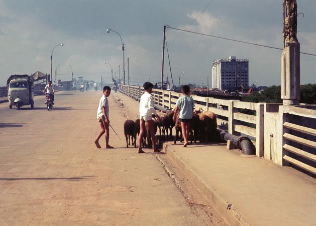 Một Lịch Sử Đau Thương Của Thành Phố Sài Gòn Năm 1968 - Page 2 2-mu_t20
