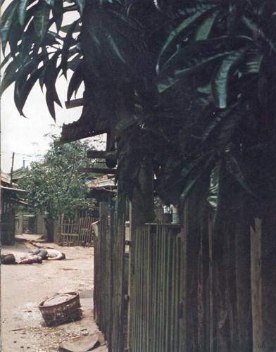 Một Lịch Sử Đau Thương Của Thành Phố Sài Gòn Năm 1968 - Page 2 4-mu_t11