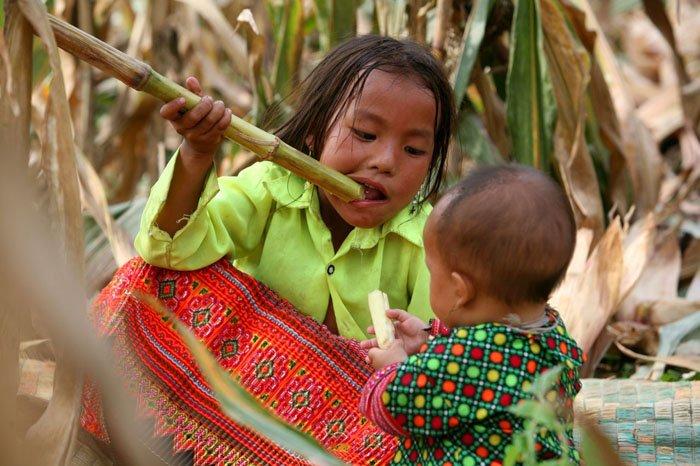 Những bức ảnh về tình yêu thương của anh em, chị em, trong cảnh nghèo, khiến người xem rơi lệ Iw7dyu10