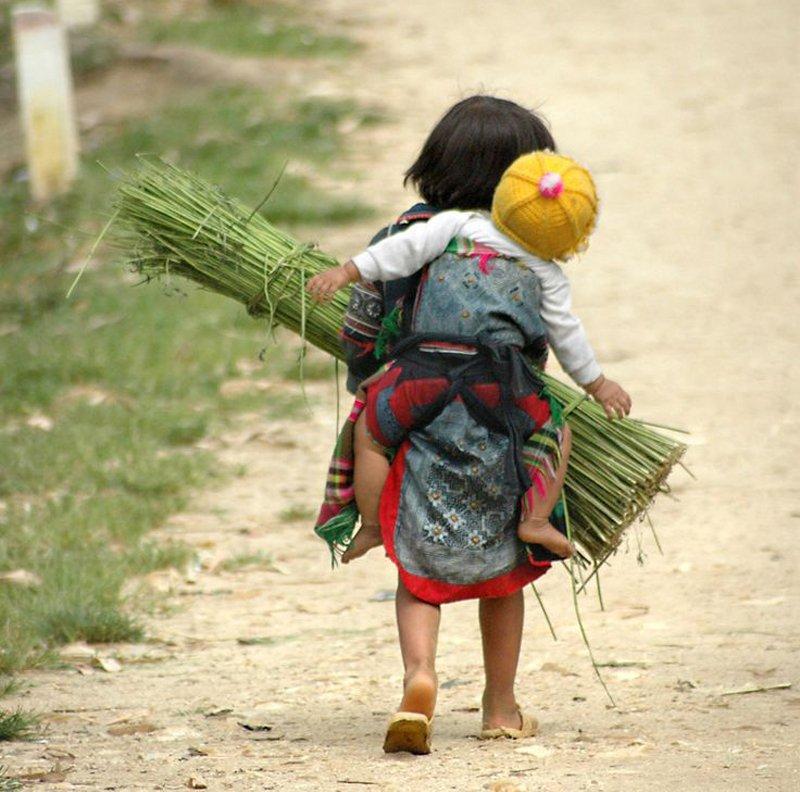 Những bức ảnh về tình yêu thương của anh em, chị em, trong cảnh nghèo, khiến người xem rơi lệ Tojh4i10