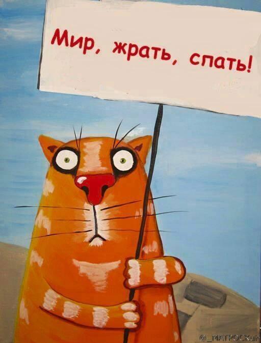 Вася Ложкин! Ie_aaz10