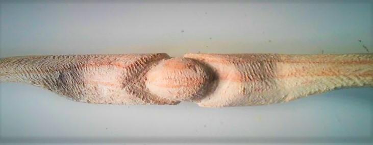 Mollegabet decorado con dos serpientes 7huevo11