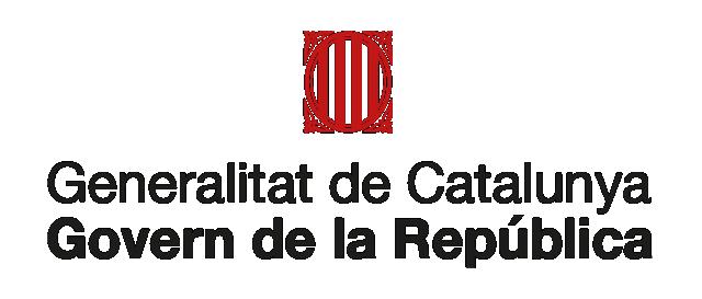 GOVERN | Comparecencia del President Puigdemont sobre la crisis de Pontons y Vall d'Aran Logoca10