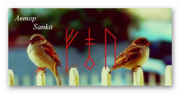 """""""Рассорка на птиц"""" Автор: Санкит  Ashamp18"""