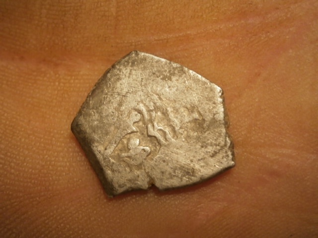 identificación (hecha polvo) P1250019