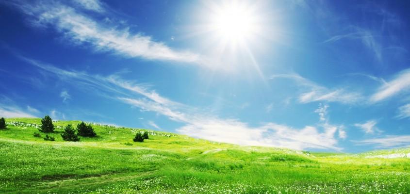 Alergija Sunce-10