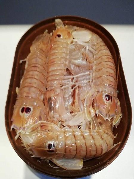RIBA - MORSKA i SLATKOVODNA: vrste, zanimljivosti, pitanja, ribolov, recepti za pripremu... - Page 22 Rak_hh11