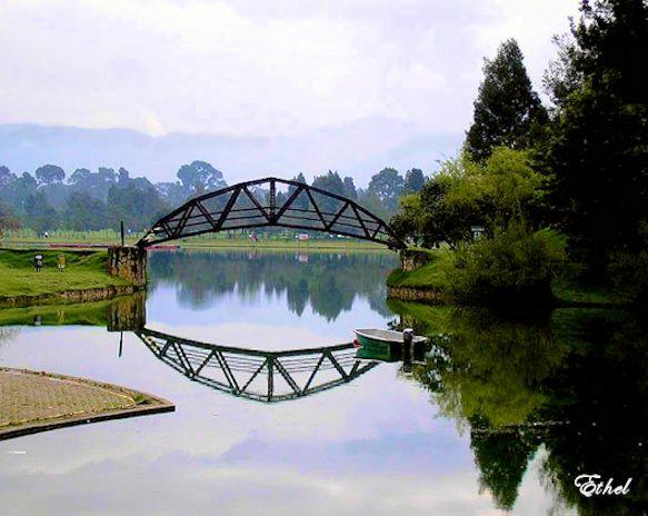 LA IMAGINACIÓN A PRUEBA Puente10