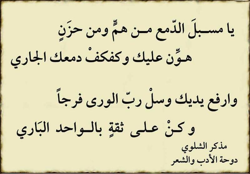 يا مسبل الدمع 19959310