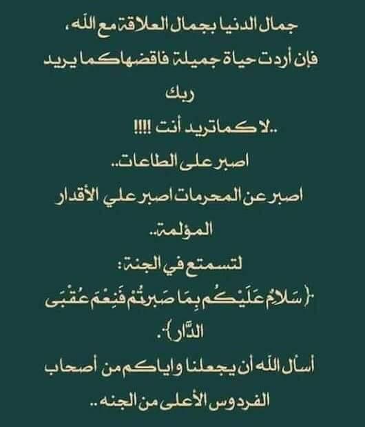 جمال الدنيا 25299310
