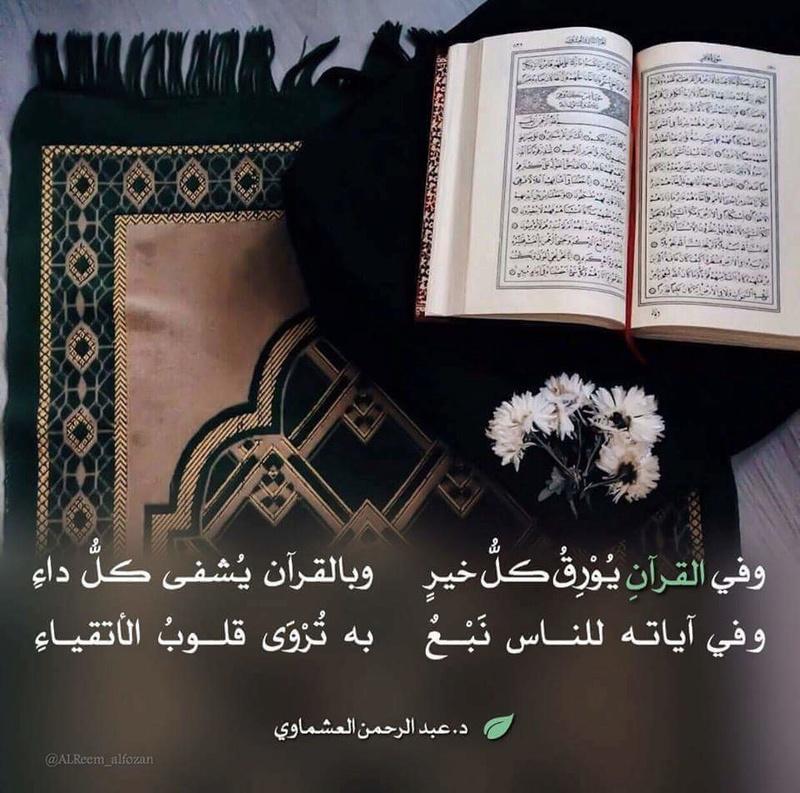 وفي القرآن 28276810