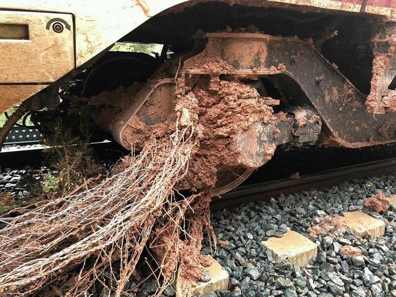 Otro incidente ferroviario - Página 5 28783210