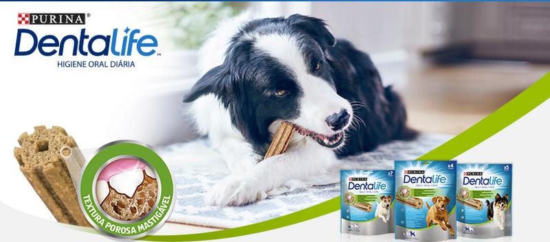 Amostra Dentalife-Purina(Amostra para cão) Header10