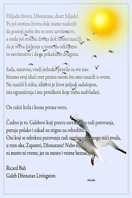 Upotrbljena romantika - Page 38 Suncee10