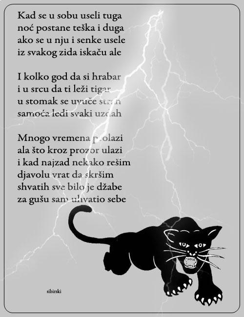 Upotrbljena romantika - Page 38 Tigar111