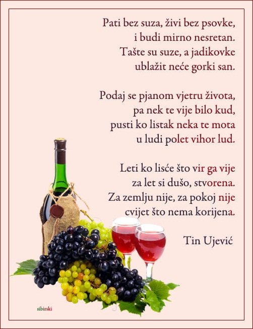 Upotrbljena romantika - Page 37 Vino510