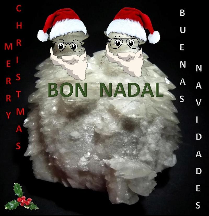 Bon Nadal i Feliç Any 2017 Bon_na11