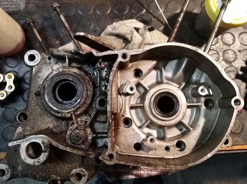ducati - Ducati MT 50 TT Reparar Img_2011