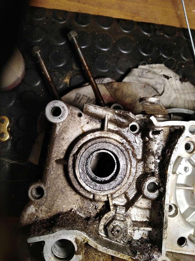 ducati - Ducati MT 50 TT Reparar Img_2012