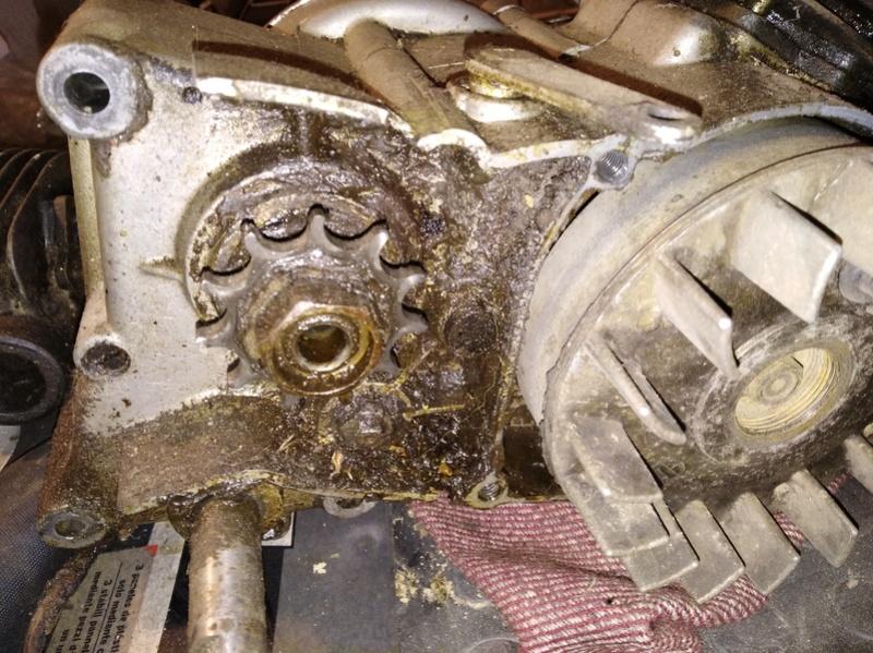 ducati - Ducati MT 50 TT Reparar Img_2013