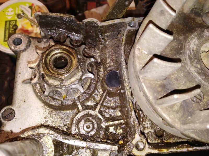 ducati - Ducati MT 50 TT Reparar Img_2016