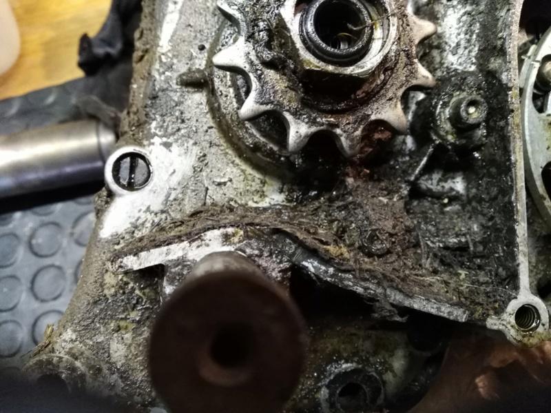 ducati - Ducati MT 50 TT Reparar - Página 2 Img_2019