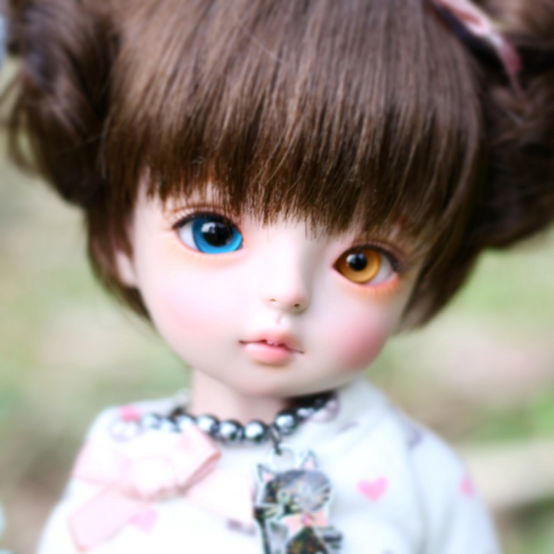 March of Dolls Colorf10
