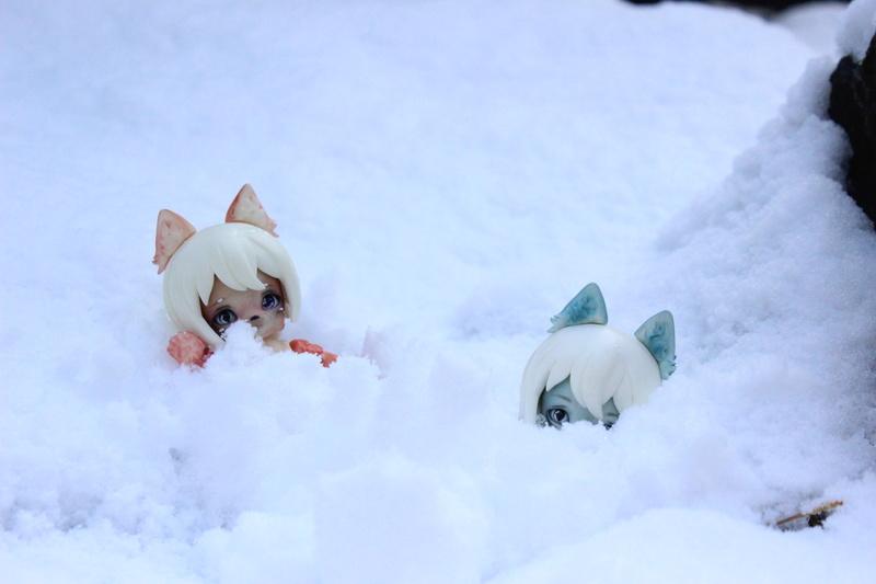 Munchkin Attack : SIO2 - Civet Cat (p.5) - Page 5 Img_0076