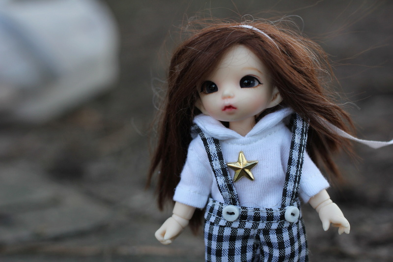 Petite feuille d'automne - Pukipuki Ante Fairyland Img_2412