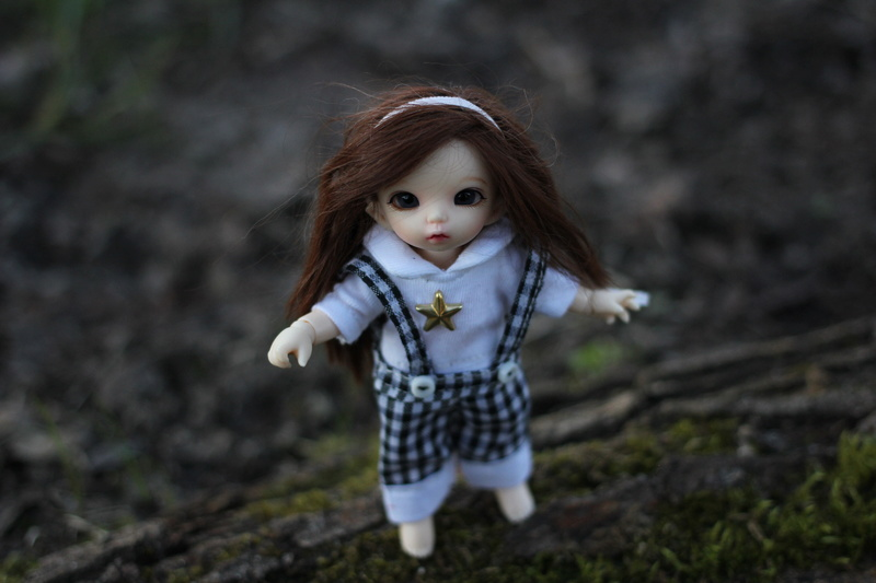 Petite feuille d'automne - Pukipuki Ante Fairyland Img_2413