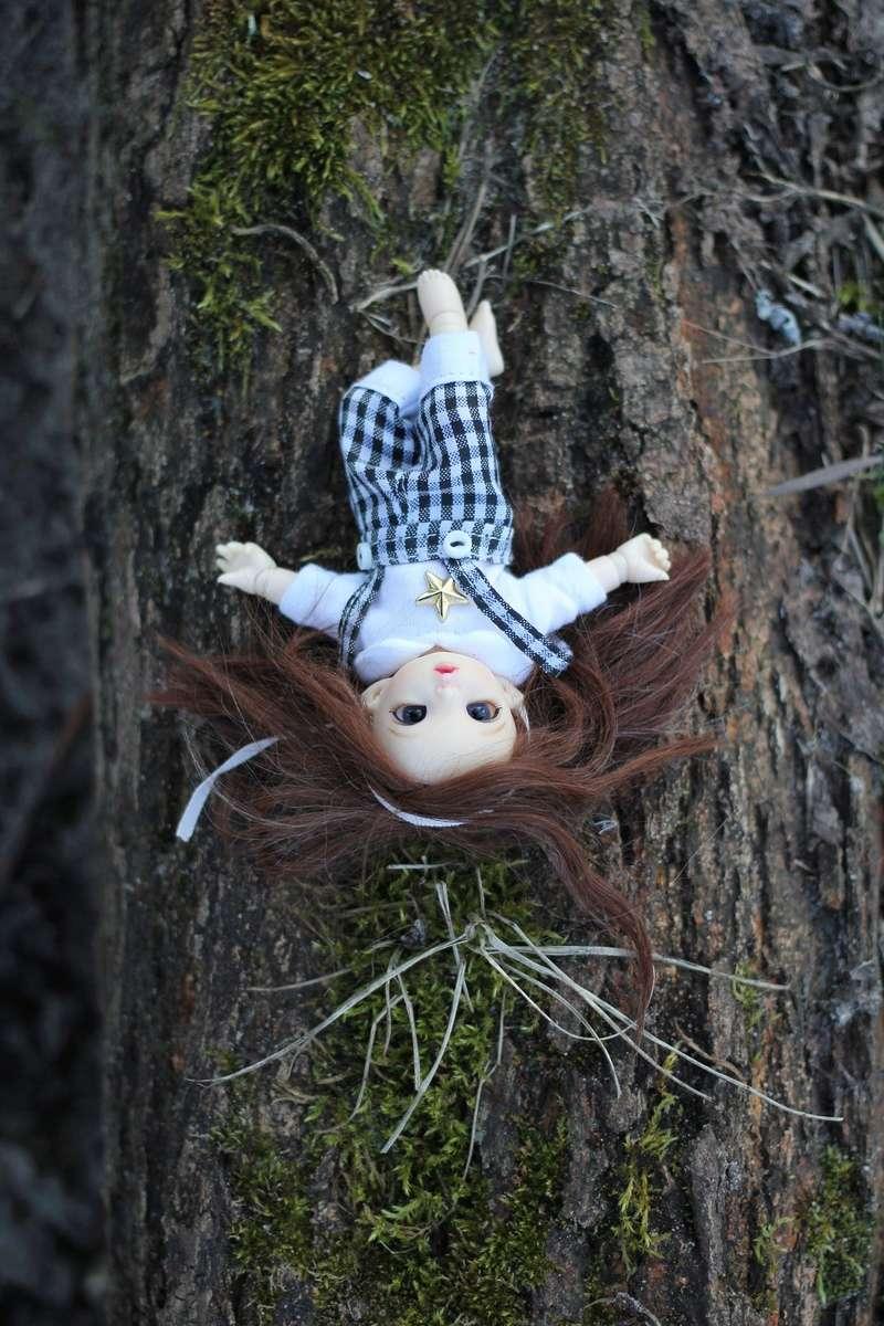 Petite feuille d'automne - Pukipuki Ante Fairyland Img_2414