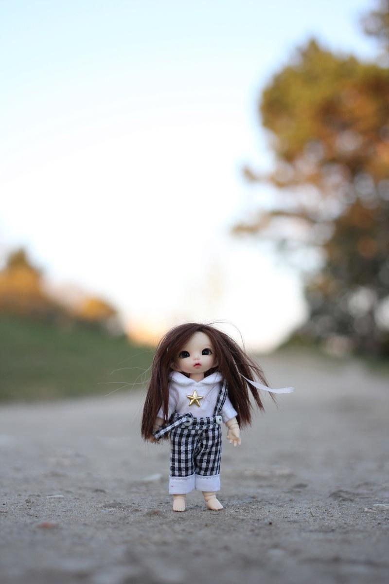 Petite feuille d'automne - Pukipuki Ante Fairyland Img_2415