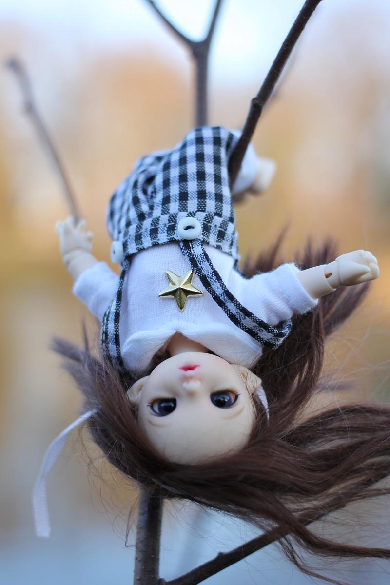 Petite feuille d'automne - Pukipuki Ante Fairyland Img_2416