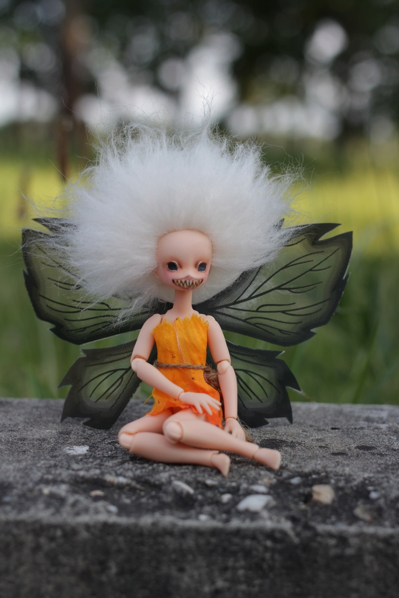 Blight Fairy : Azone Picco Neemo  Img_3014