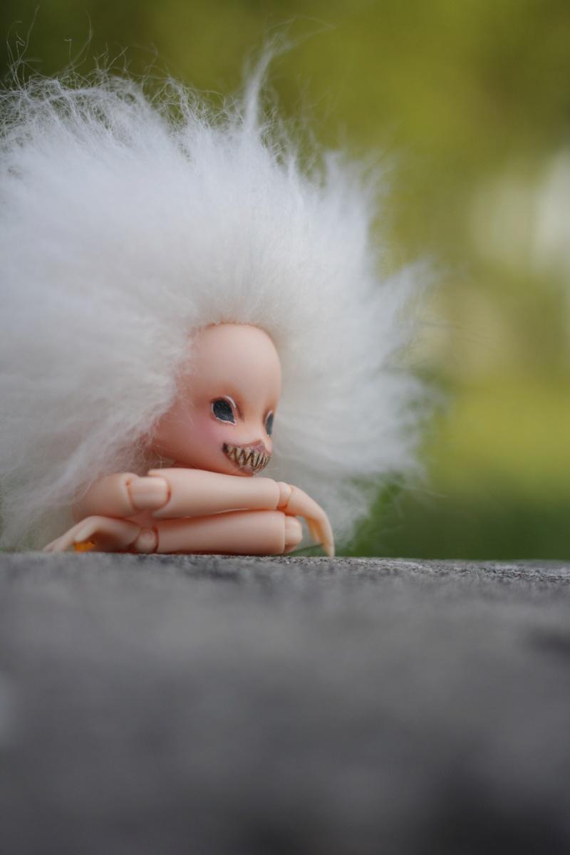 Blight Fairy : Azone Picco Neemo  Img_3015