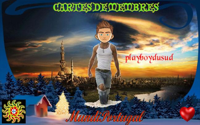 CARTES DE MEMBRES playboydusud Playbo11