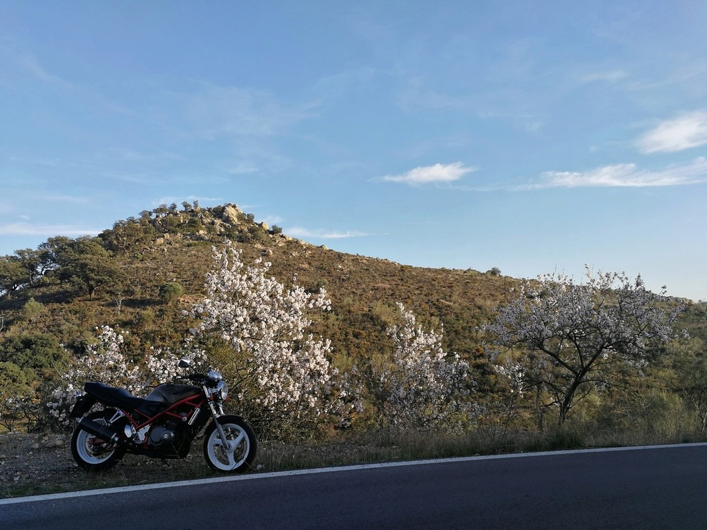 Embalse de Casasola en Málaga Img_2036
