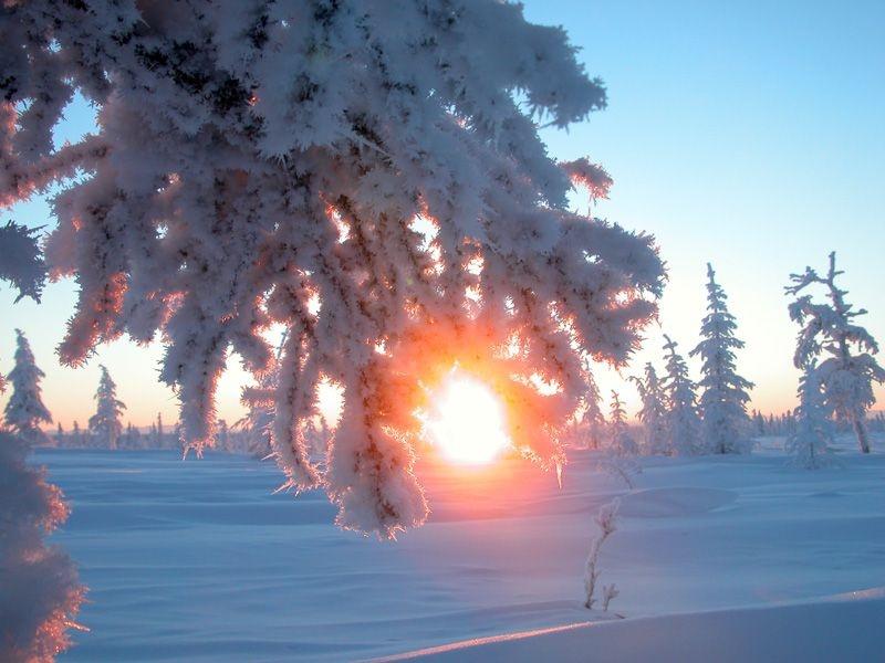 Карачун – Грозный и неумолимый Бог морозов. 13560210