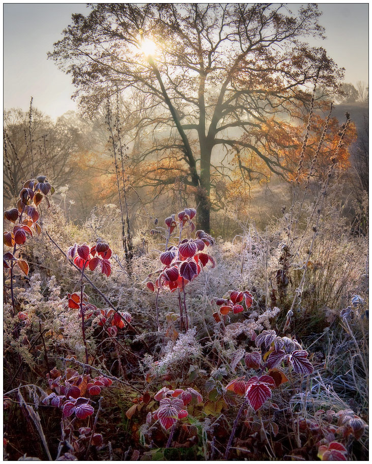 14 октября Покров день - Первый снег 9079_o10