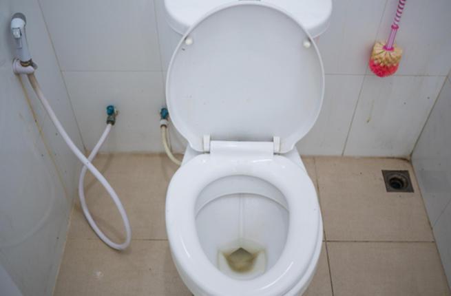 6 خطوات للحصول على مرحاض نظيف ولامع Toilet10